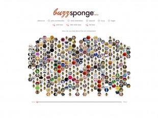 Buzzsponge